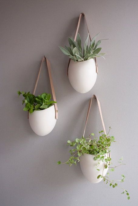 White hanging planter pots with green ferns against neutral grey wall