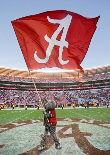 Alabama mascot Big Al waves the Alabama flag following a win over Tennessee. Alabama beat Tennessee 45-10. (Dave Martin/AP)