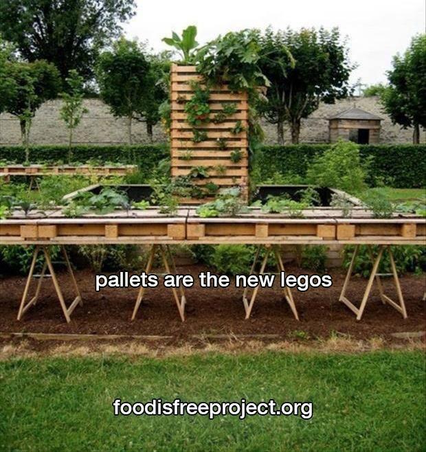 Pallet Veggie Garden: Pallet Vegetable Garden !!! :)