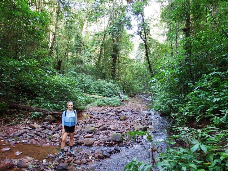 Best Laos Trekking in Luang Namtha   The Married Wanderers