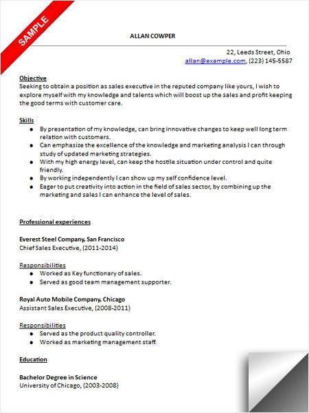 customer care executive resume