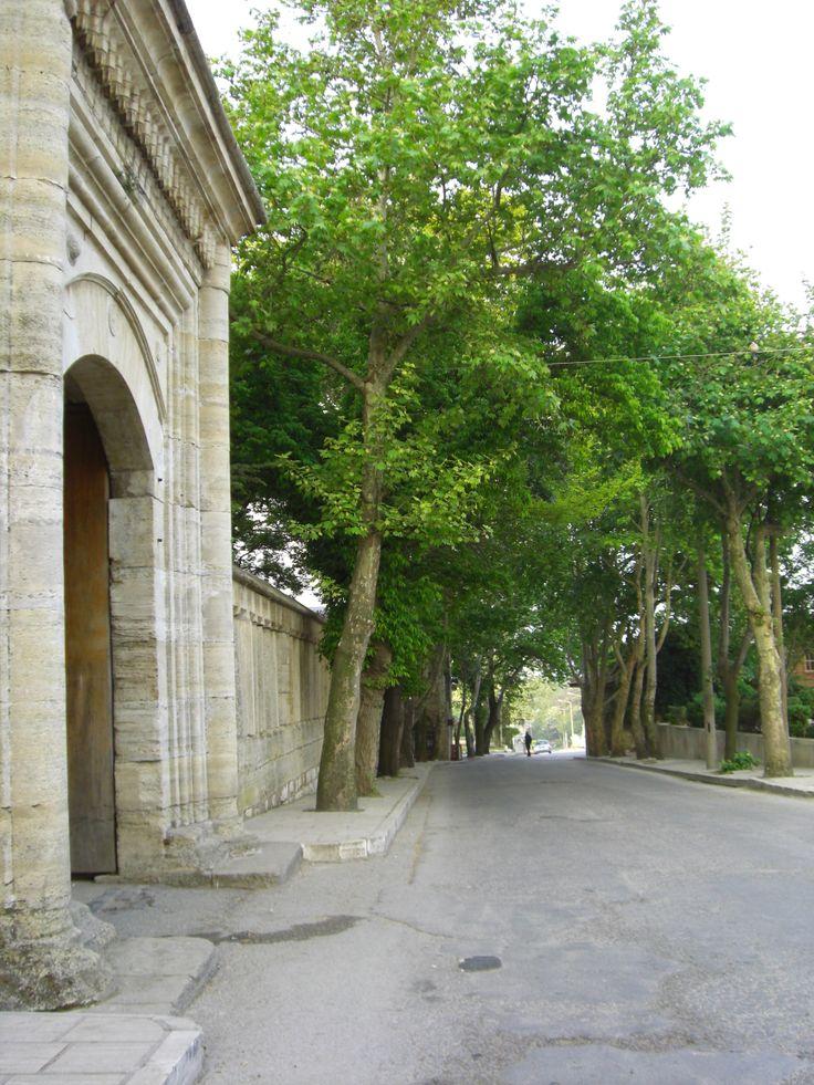 selimiye camii,edirne,türkiye