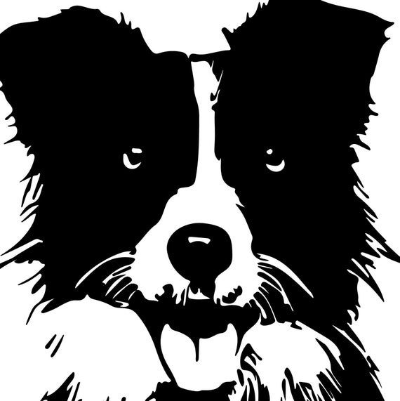 Border Collie Sheep Dog Svg File Collie Dog Svg For Cricut Etsy In 2021 Collie Dog Dog Silhouette Labrador Silhouette