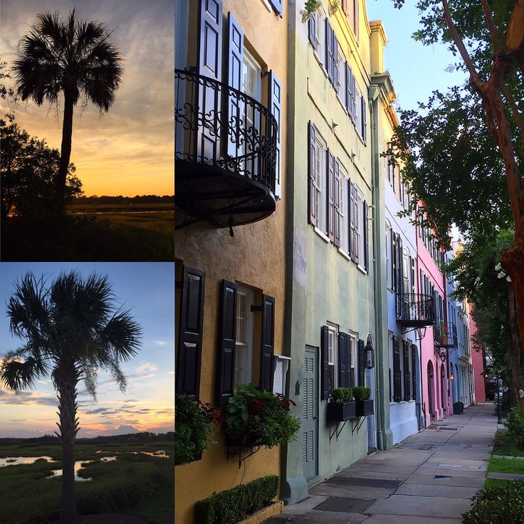 Beach House Isle Of Palms: 51 Best Images About Isle Of Palms Beach, Charleston