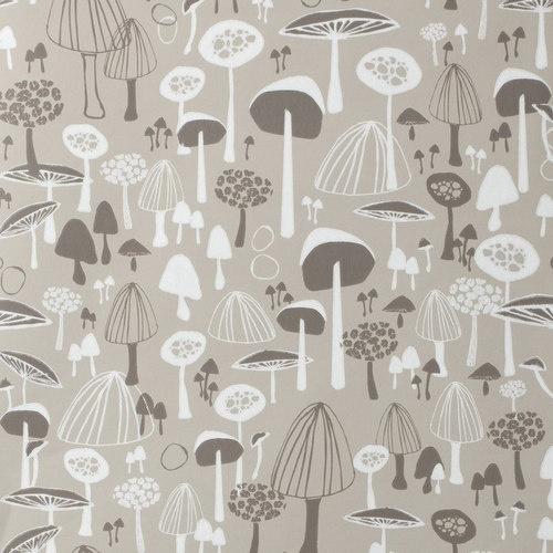 closeup of mushroom wallpaper