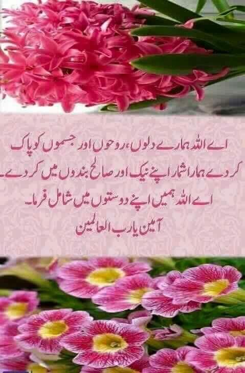 Pin by Khushi S on Dua | Good morning quotes, Beautiful dua