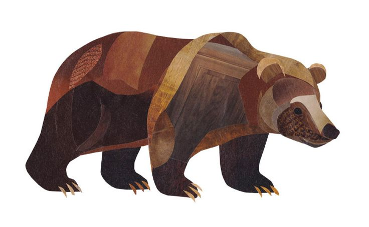 Collage Grizzly Bear illustration by wildlife illustrator, Jonathan Woodward. #Collage #GrizzlyBear