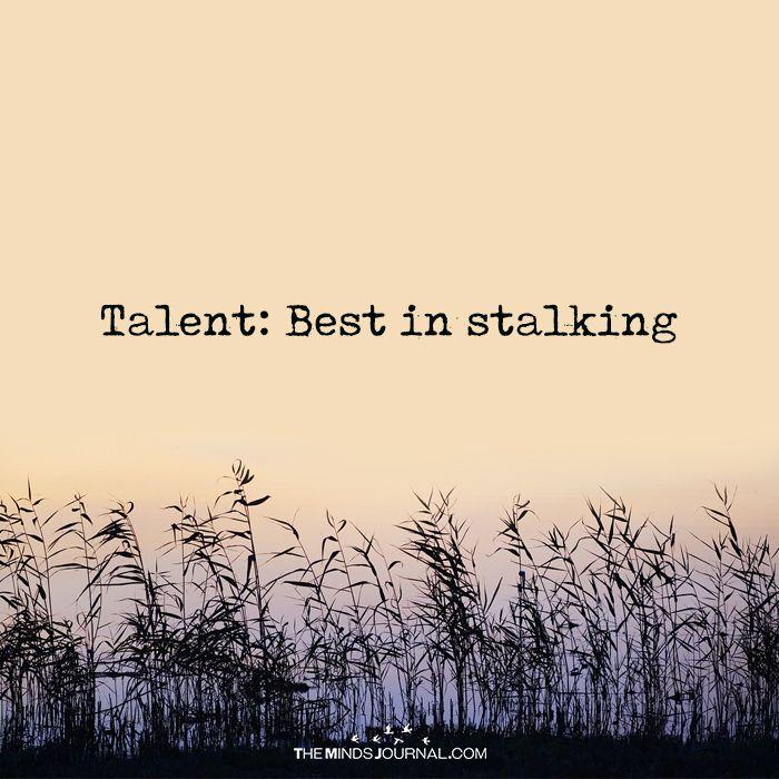 Talent: Best In Stalking - https://themindsjournal.com/talent-best-salking/