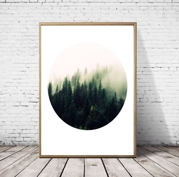 42 best Nature Wall art graphy images on Pinterest
