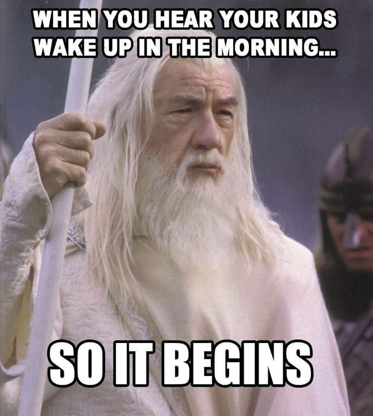 Although inaccurate as it was not Gandalf that spoke this line, it is still pretty funny.