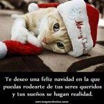Imagenes con mensajes positivos de navidad