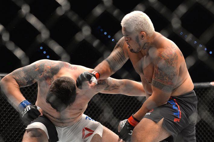 The Super Samoan' Downs Mir in 1st Round KO at UFC 85 in Brisbane