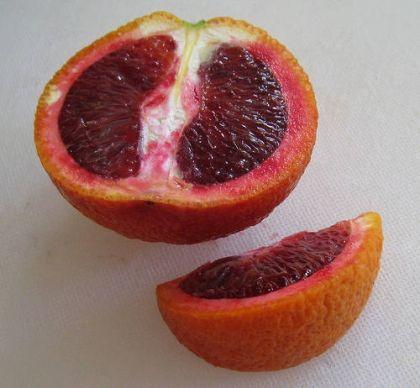 Vérnarancs 'Moro' (30/40cm) - (Citrus sinensis 'Moro'): Citrusfélék | Ár: 4500.00 Ft