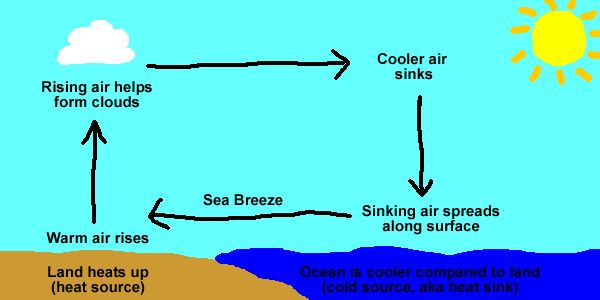 convection currents essay Physics: conduction, convection  we will write a custom essay sample on  a good example of convection is water boiling in a pan of the convection currents.