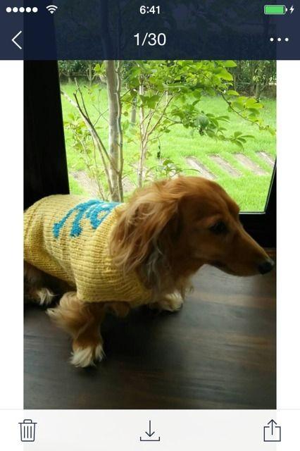 犬のセーターの作り方