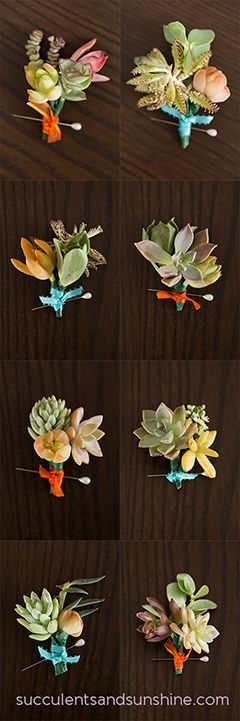 Succulent Boutonniere Ideas - How to Make a Succulent Boutonniere - http://www.succulentsandsunshine.com