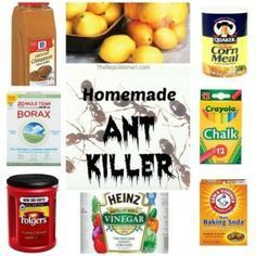 Homemade Ant Killer Recipes - while the Borax recipe is everyone's favorite, it is toxic so it's not my favorite. The corn meal cure works really well, the lemon juice and the cinnamon recipes do add great fragrance while getting rid of the ants,