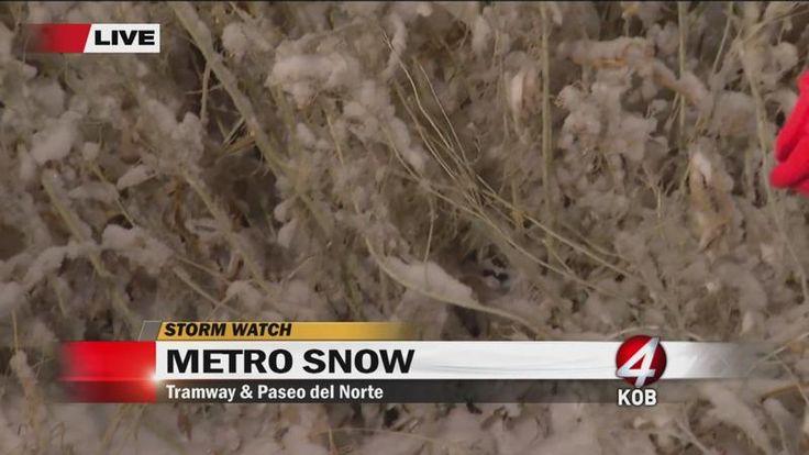 KOB 4 - Albuquerque News, New Mexico News, Eyewitness News 4 | KOB.com
