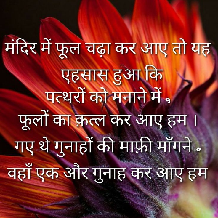 Beautiful Shayari Images Images & Pictures - Becuo