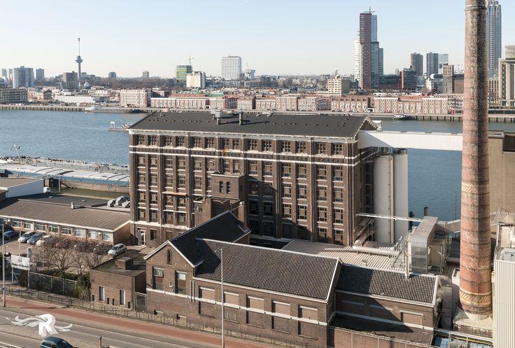 Charlios | Rotterdam | The Netherlands