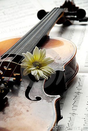 the most beautiful sound in the world comes from a violin