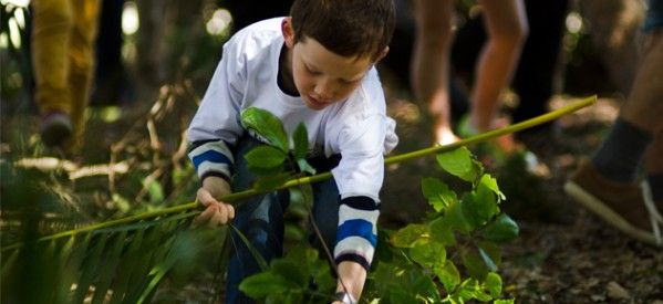 Forest Schools Offer Enormous Benefits for Kids, as seen in Haven Magazine   #NaturePlayQLD