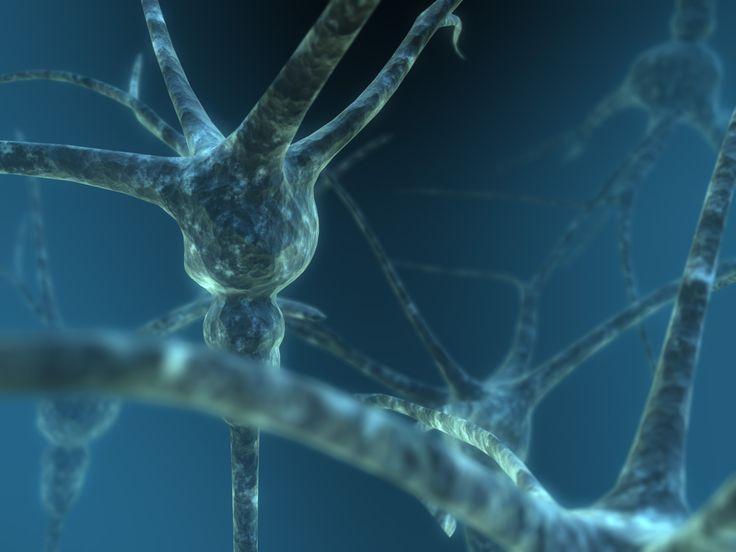 """Relatório """"Alzheimer 2012″ revela que o estigma e a exclusão social são os maiores desafios"""