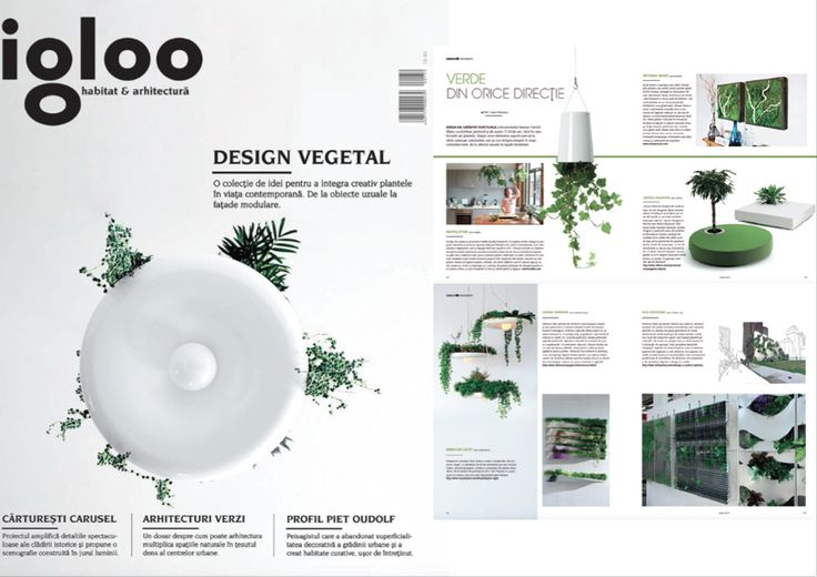 Eco-System Feature in Igloo Magazine