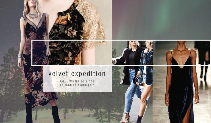 Velvet Expedition - Telio Fashion Fabrics