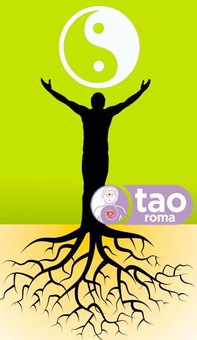 Il termine Qì Gōng si riferisce a una serie di pratiche e di esercizi collegati alla medicina tradizionale cinese e in parte alle arti marziali che prevedono la meditazione, il controllo della respirazione e…