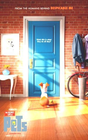 Come On Stream The Secret Life of Pets Cinema Online The Secret Life of Pets English Complet Filem Online gratis Streaming Streaming The Secret Life of Pets Complete Film Cinema Download nihon Filem The Secret Life of Pets #MovieTube #FREE #Moviez This is Complete
