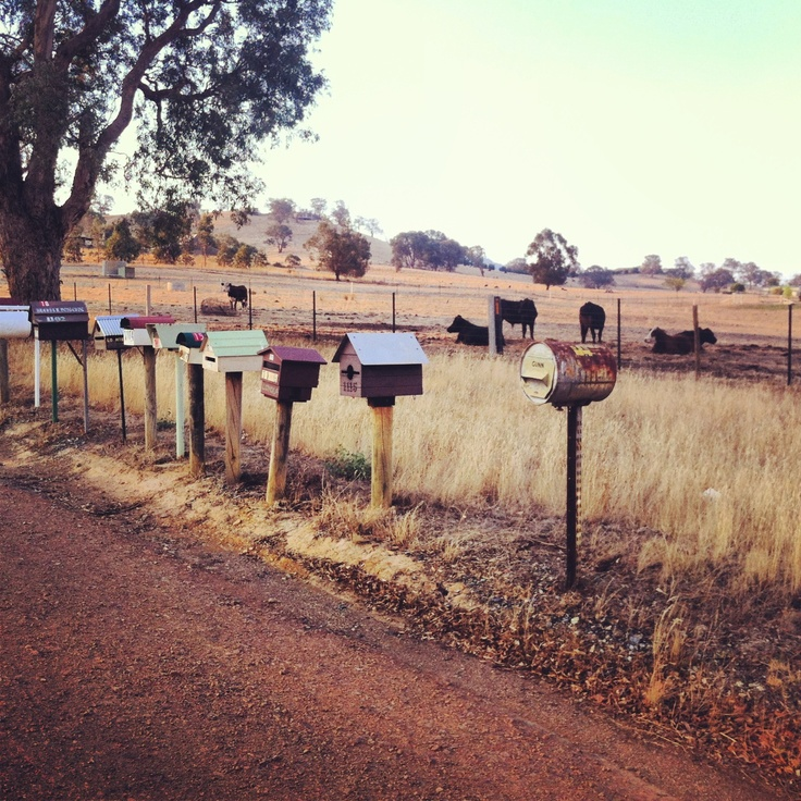 Mansfield, Victoria #country
