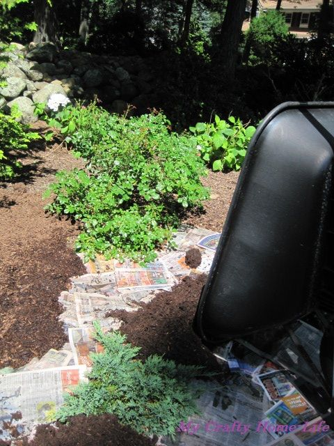 The lazy way to weed and mulch