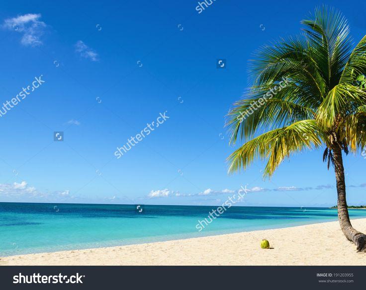 Île d'Aruba, Antilles Néerlandaises