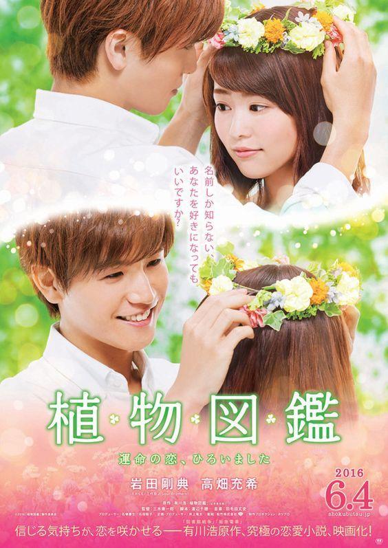 Evergreen Love Movie
