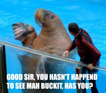 The Complete Walrus Bucket Saga - One day son you will have a bucket