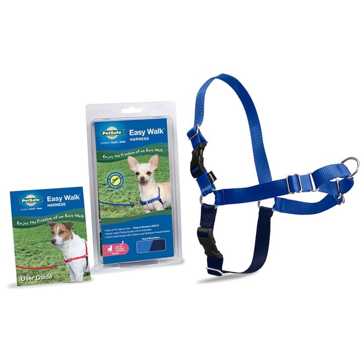 PetSafe+Easy+Walk+Blue+Dog+Harness+-+Designed+to+gently+discourage+dogs+from+pulling+while+walking+on+a+leash.+Unlike+traditional+collars,+this+harness+never+causes+coughing,+gagging+or+choking+because+the+chest+strap+rests+low+across+the+breastbone. - http://www.petco.com/shop/en/petcostore/product/petsafe-easy-walk-blue-dog-harness