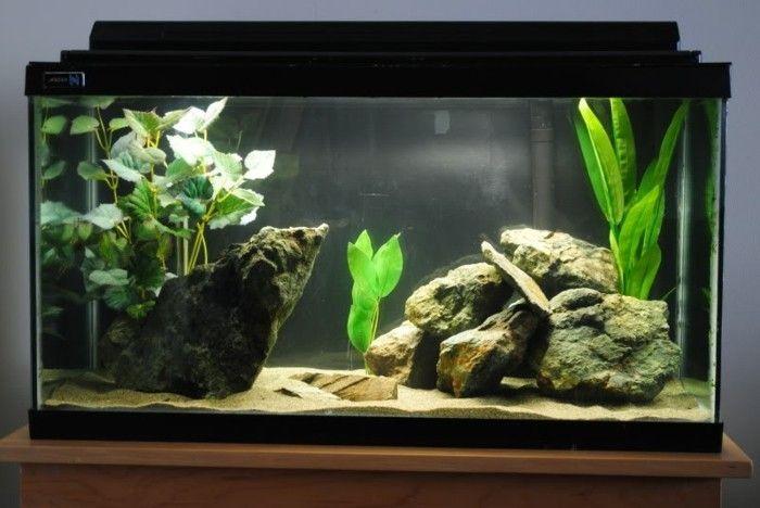die besten 25 aquarium einrichtung ideen auf pinterest. Black Bedroom Furniture Sets. Home Design Ideas