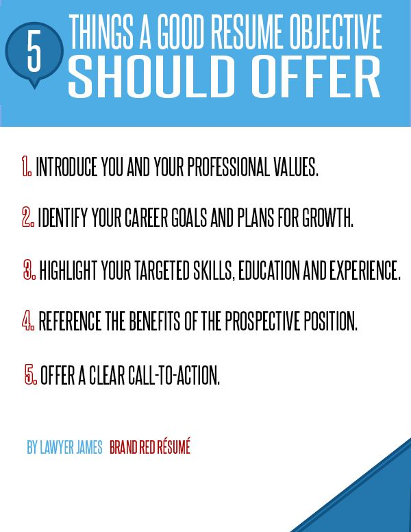 5 things a good resume objective should offer infographic. Resume Example. Resume CV Cover Letter
