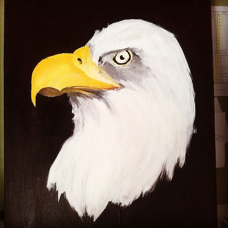 Eagle head painted using Acrylic's :)