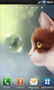 Apklio - Apk for Android: Curious Cat v1.2.0 apk