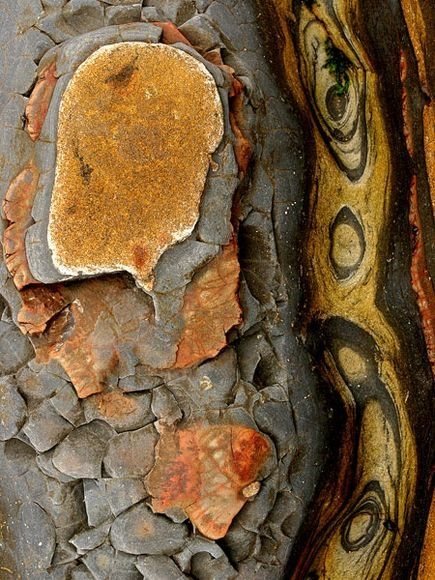 Erosion reveals swirls of color and pattern in rocks in Point Lobos State Reserve, California.   ©Charles Kogod