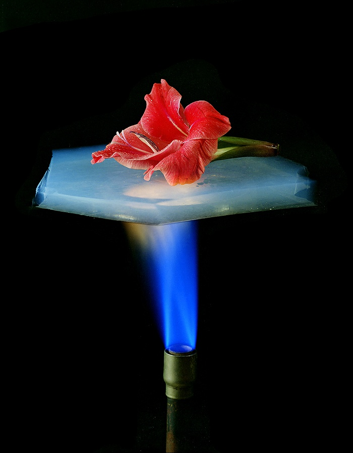 Aerogel, as well as being strong for it's weight is incredibly heat resistant #material #technology #innovation