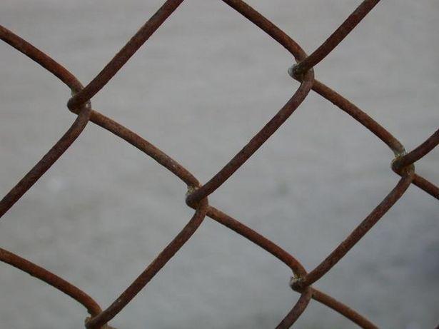 Die besten 17 Bilder zu Fencing auf Pinterest | Lowes, Kettenglied ...