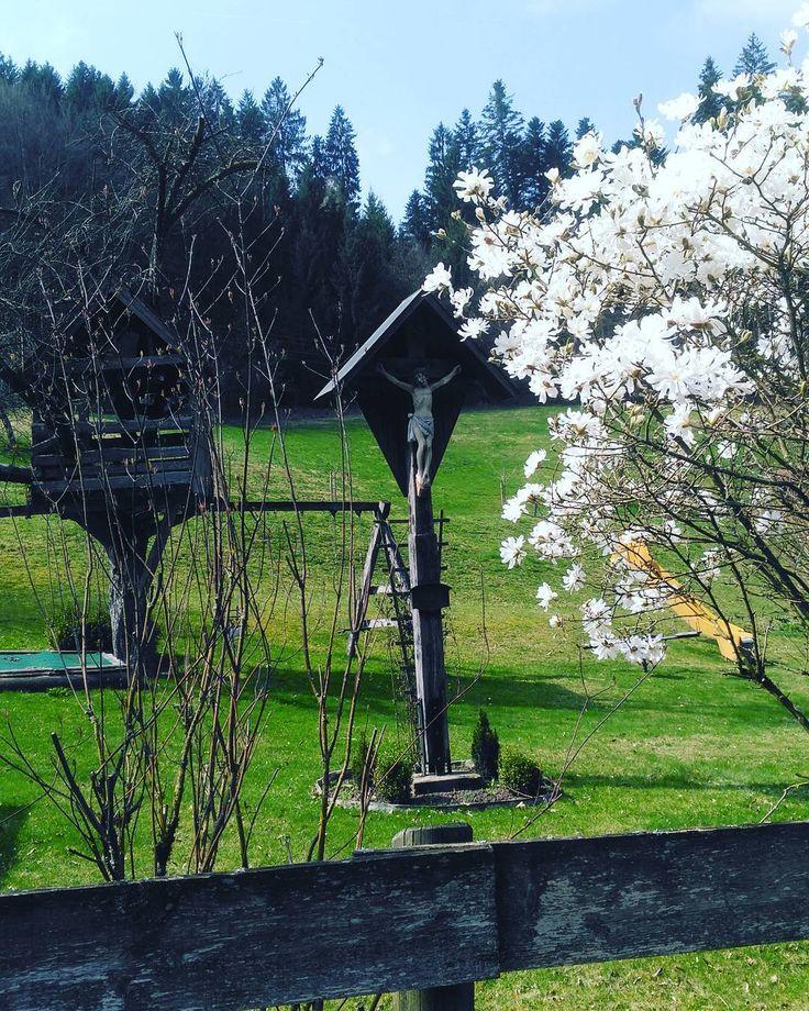 Landscape in Beutental. Herrgottswinkel mit Baumhaus und blühendem Kirschbaum im idylischen Beutental bei Lorch. #landscape #natur #nature #instapic #instapicture #instaphoto #tree #kirschblüte #kirschbluete #idylle #valley #green #monday #montag #goodmorning #gutenmorgen #jesus #cross #bunny