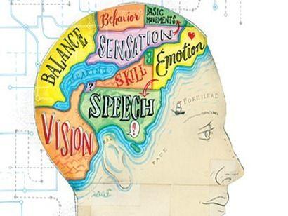 ¿Qué es la neuroeducación y para qué sirve? ¿Cómo integramos la neurodidáctica en el contexto educativo? Aquí lo explicamos. Guía útil para