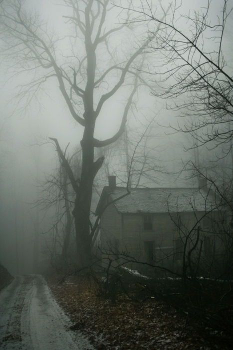 Ghost in The Myst