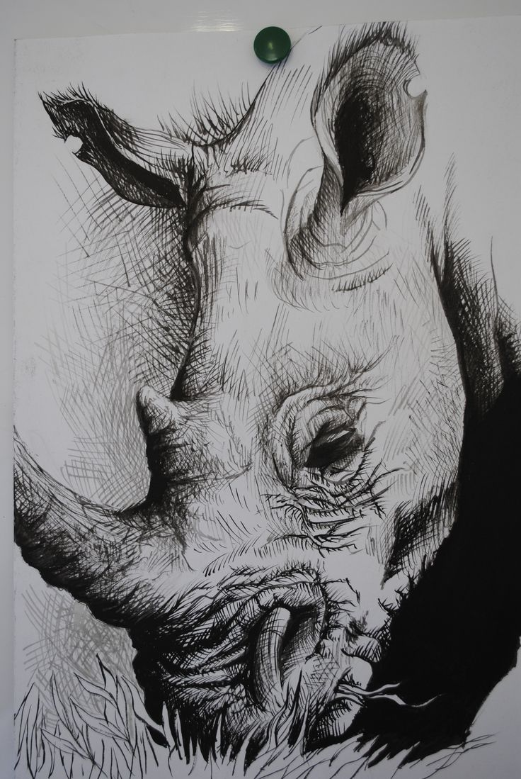 2012 - Rhino (This was a quick painting I did based off of someone's sketch on DA)