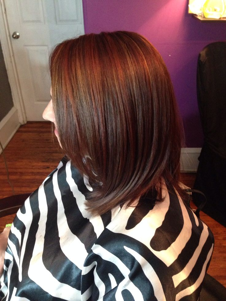 Copper Hair Color On Dark Brown Hair Dark Brown Hairs Of