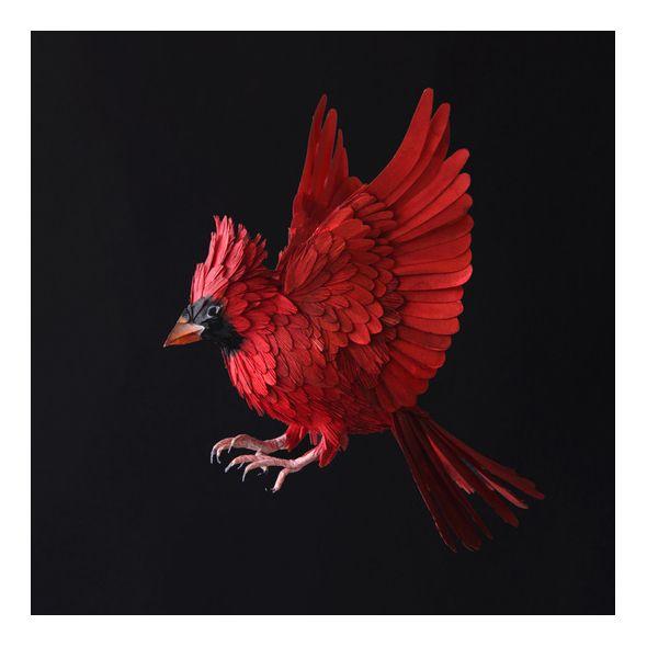 Gli incredibili uccelli di carta di Diana Beltran Herrera | PICAME